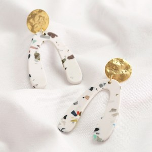 Resin Irregular shape earrings